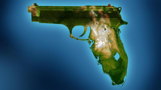 gun.FL